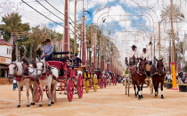 Calèches dans la Feria
