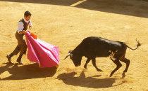 Une capea dans les arènes d'une hacienda vers Séville