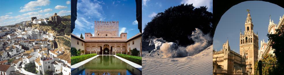 Panoramique de Vejer / Patio de Comares de l'Alhambra / Cheval dans une dune / Giralda de Séville