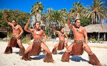 Spectacle de Polynesia