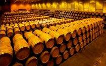 Caves de vieillissement du vin